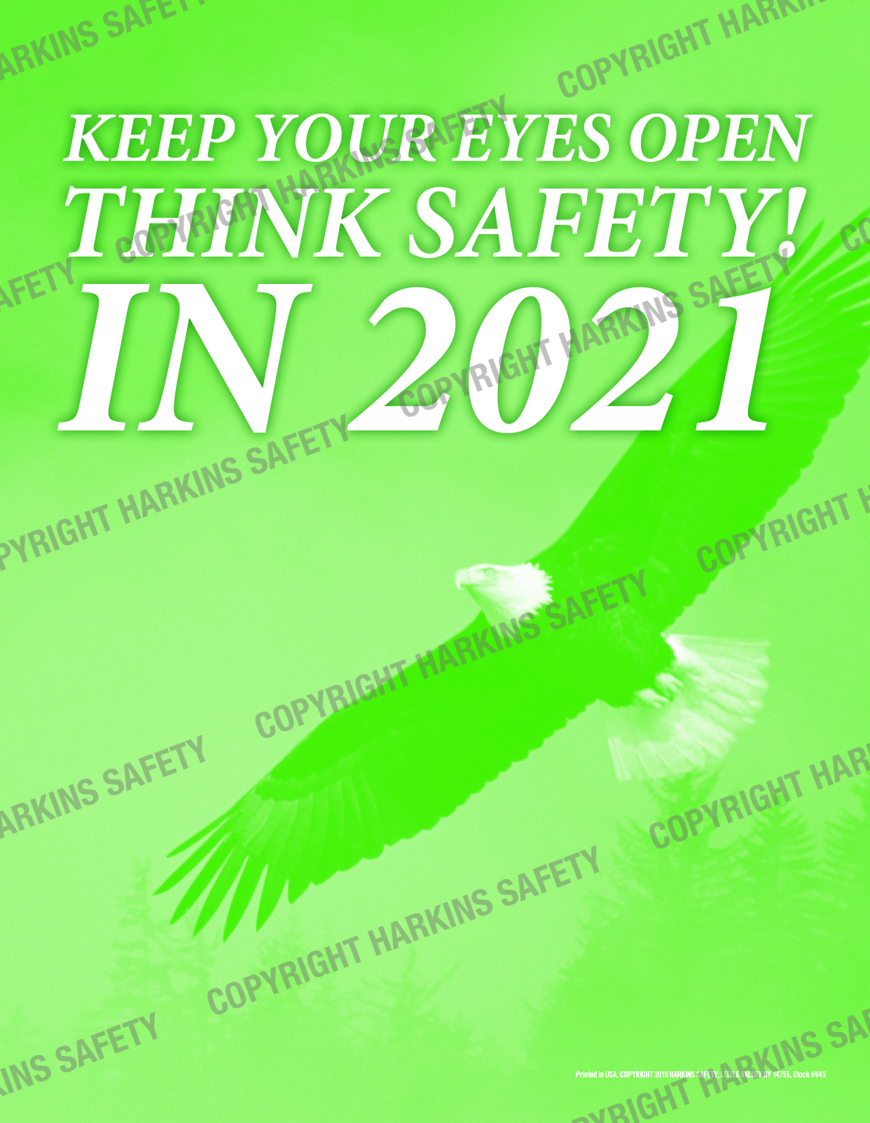 645 WM Eyes Open 2021 - Keep Your Eyes Open... Think Safety In 2021  (Poster)  PT645